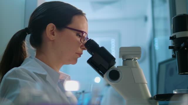研究室で研究している若手生命科学者 - 研究所点の映像素材/bロール
