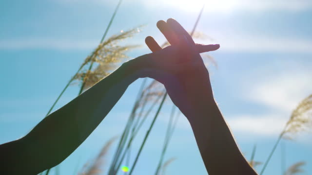 Young loving couple holding hands against sun