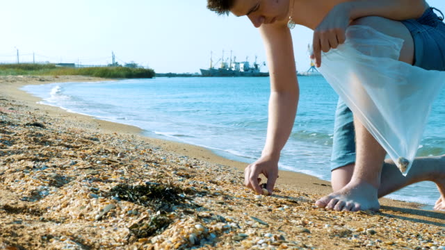 vídeos de stock e filmes b-roll de a young man collects shells in a plastic bag on the beach. - bugio