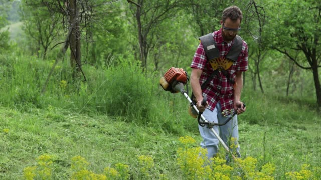Young man cutting grass with a trimmer Serious young Caucasian man wearing red checkered shirt and jeans cutting grass in orchard with a weed wacker weeding stock videos & royalty-free footage