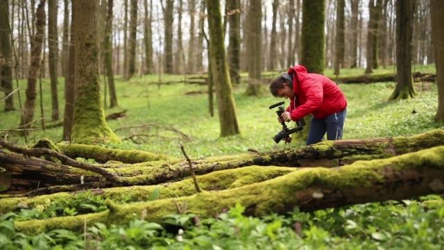 young man films moss on fallen tree in forest - дикая местность стоковые видео и кадры b-roll