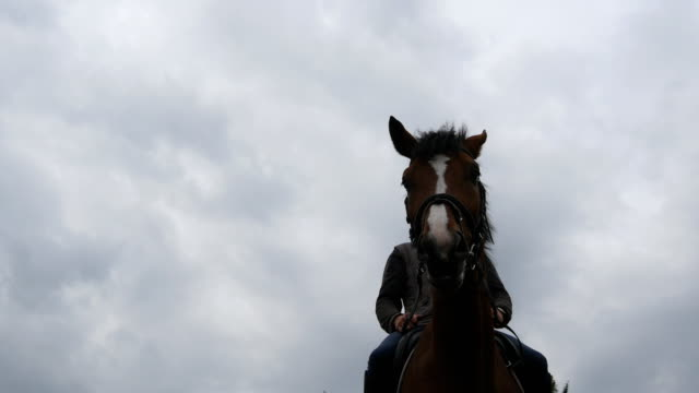 Young man horseback riding outdoor. Male jockey riding a horse on dark cloudy day. Beautiful rainy sky at background. Muzzle of stallion close up. video