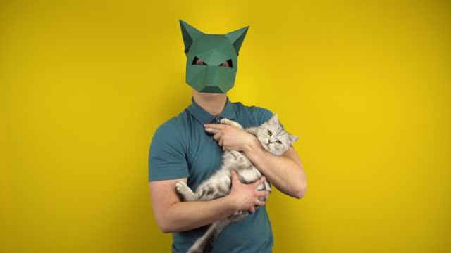 en ung man i en papp schakal mask håller en katt i famnen på en gul bakgrund. man i en grön polo och mask. - kattdjur bildbanksvideor och videomaterial från bakom kulisserna