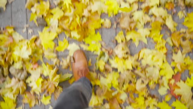 vídeos de stock e filmes b-roll de a young man in leather shoes is walking along a path with fallen leaves. - passagem de ano