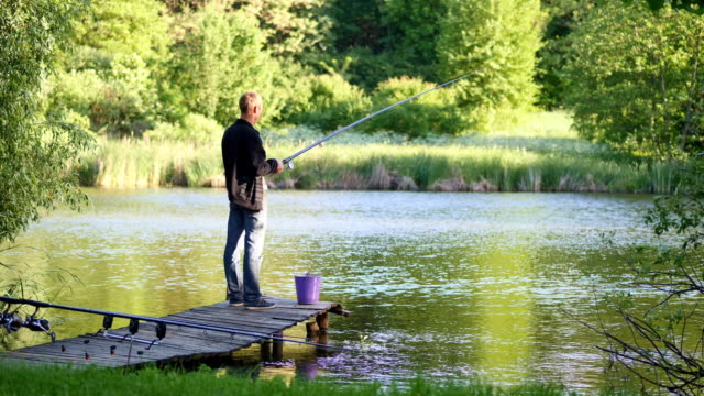a young man is fishing in a pond - fishing stock videos and b-roll footage