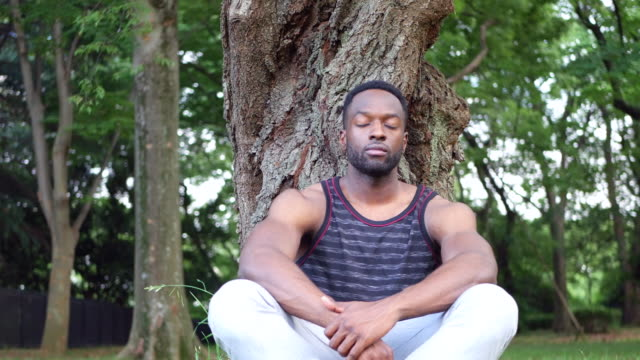Young man meditating at the park A young man sitting under a tree, doing exercise and meditation exercises. zen like stock videos & royalty-free footage