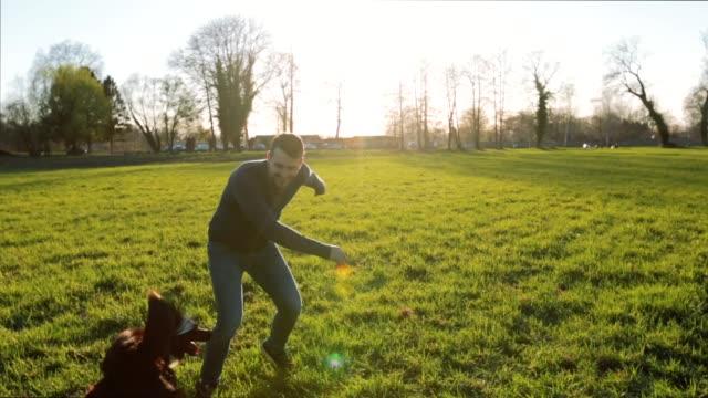 vídeos y material grabado en eventos de stock de un hombre joven jugando al aire libre con su perro - training