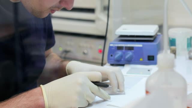若い男研究員試験の科学的なサンプルを準備 - 研究所点の映像素材/bロール