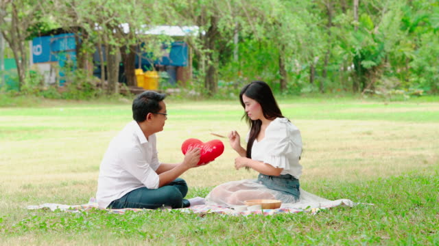 young man stood heart-shaped pillow as a gift to his girlfriend on valentine's day as a picnic in the park. - young couple wedding friends video stock e b–roll