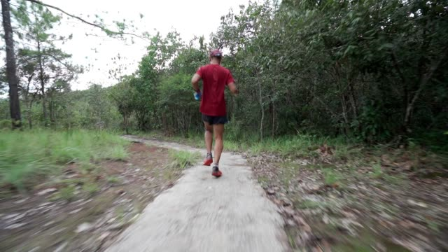 Young man trail runner running in sunrise tropical forest