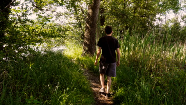 Young Man Walking on a Footpath Towards the Lake in Summer video