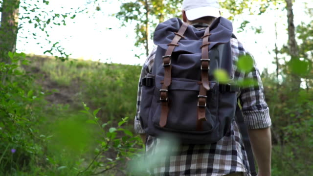 A young man walks in the woods. Hiker traveler with backpack, trekking in a pine forest and enjoy nature. Slow motion. A young man walks in the woods. Hiker traveler with backpack, trekking in a pine forest and enjoy nature. Slow motion. russian ethnicity stock videos & royalty-free footage