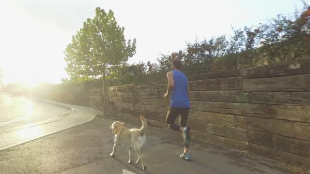 ung man med hund på utomhus sport - jogging hill bildbanksvideor och videomaterial från bakom kulisserna