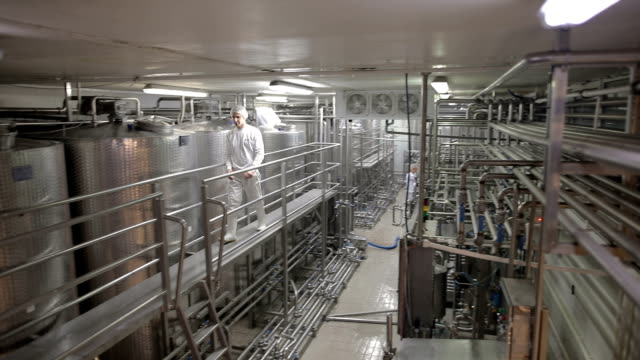 young man working at a dairy factory - acciaio inossidabile video stock e b–roll