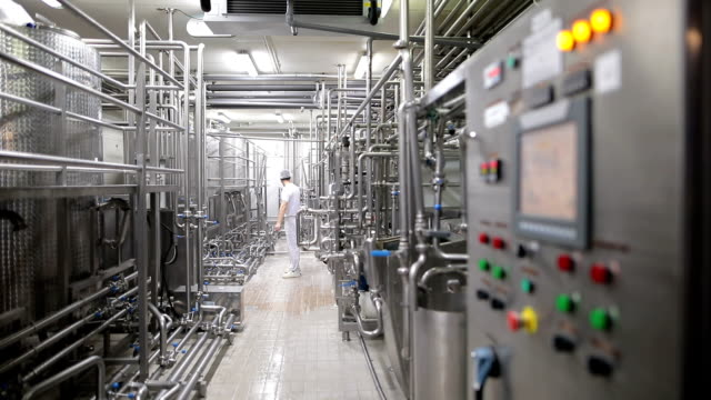 Young man working at a food factory