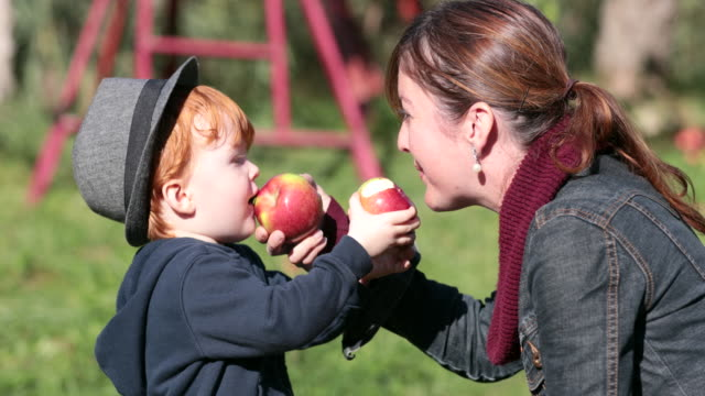 junge mutter und ihr sohn äpfel pflücken und spaß im obstgarten, quebec, kanada - apple stock-videos und b-roll-filmmaterial