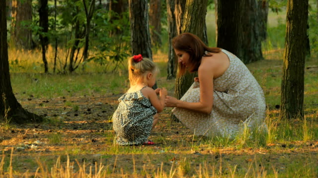 Young mother with little daughter collects cones in the forest video