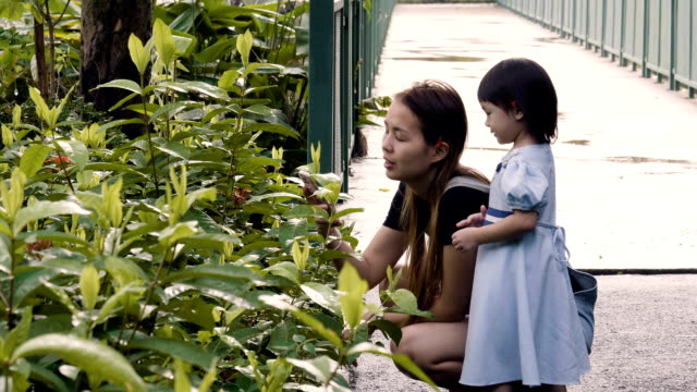 公共の公園で楽しんで少女と若い母親 ビデオ