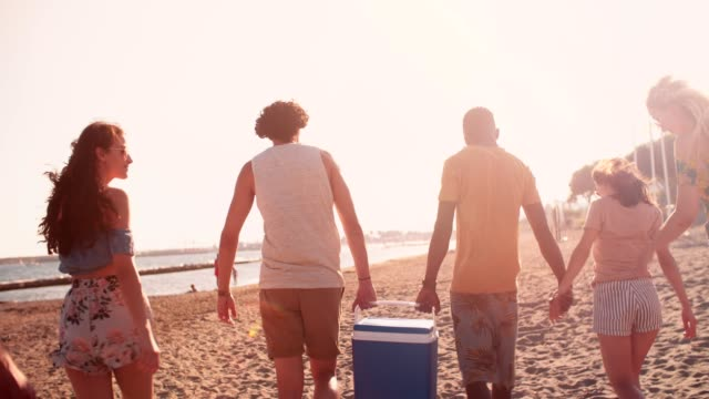 Young multi-ethnic friends walking on the beach with cooler box