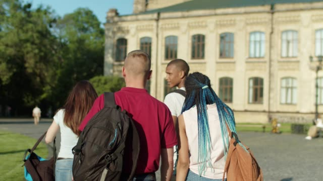 Young multinational people going to university Back view of multi ethnic college friends communicating while walking through university park before lessons. Positive diverse students with backpacks going along university campus and chatting. university student stock videos & royalty-free footage