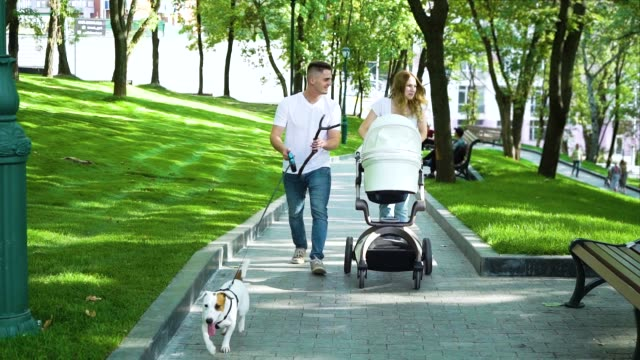 junge eltern mit kinderwagen und hund spazieren im sommerpark - hundesitter stock-videos und b-roll-filmmaterial