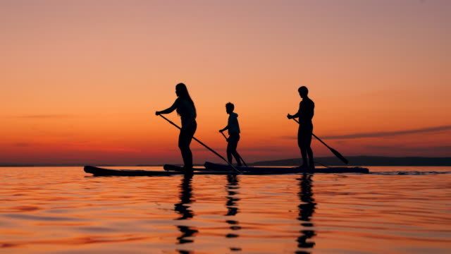 Young people are crossing sunset lake on paddleboards video