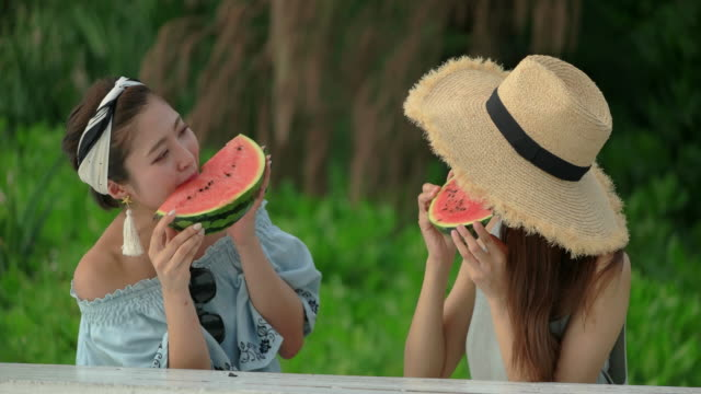 Young people having fun outdoors. Young people camping outdoors. eating water melon. Young people having fun by the beach. jp201806 stock videos & royalty-free footage