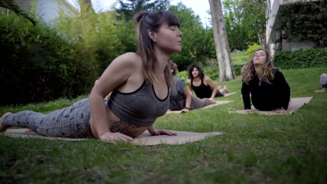 Young people performing yoga poses in park Young people performing yoga poses in park. Flexible men and women in sportswear lying on yoga mats and training outdoor. Yoga concept mental wellbeing stock videos & royalty-free footage