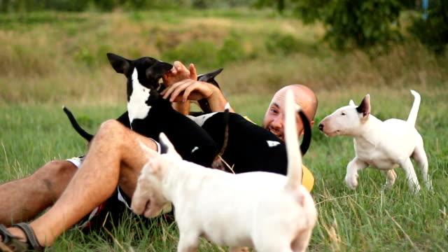 ung sällskapsdjur ägare njuter sommardag med hans lekfulla husdjur - kille hoppar bildbanksvideor och videomaterial från bakom kulisserna