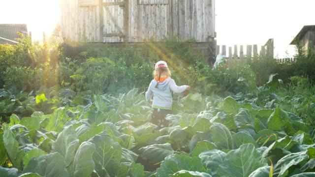 young pretty lady in cap walks along green garden plants - vídeo