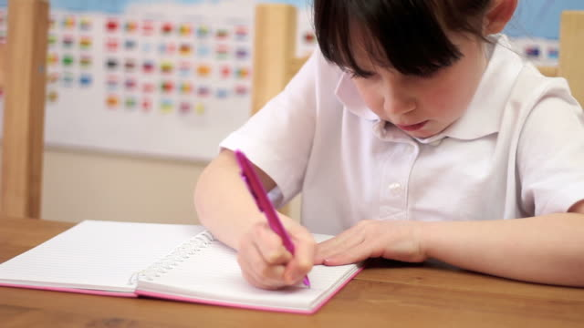 Young School Pupil writing in Classroom video