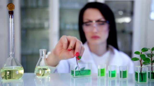 Jovem cientista no laboratório - vídeo