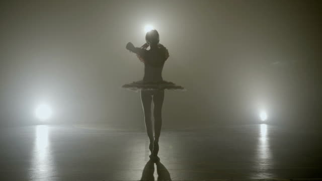 young skinny graceful ballerina dancing on a dark stage as part of the audition for an a show - tutù video stock e b–roll