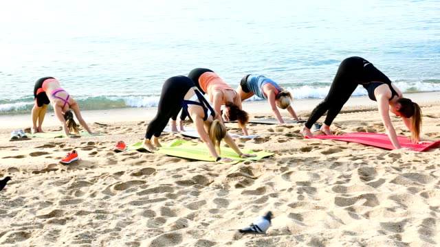 Young sporty women practicing yoga positions video