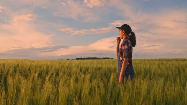 junge teenager-mädchen bauer wandern in ruhigen, idyllischen, ländlichen grünen weizenfeld, slow-motion - ländlicher lebensstil stock-videos und b-roll-filmmaterial