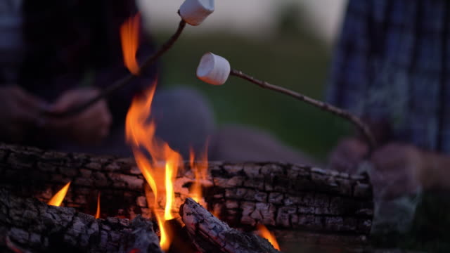 Young tourist roasting marshmallow over the bonfire near camping. Young tourist roasting marshmallow over the bonfire near camping. marshmallow stock videos & royalty-free footage