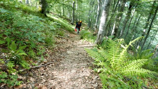 bir dağ yolu üzerinde tırmanma bir genç turist kadın - uzun adımlarla yürümek stok videoları ve detay görüntü çekimi