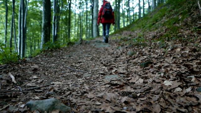 bir dağ yolda yürüyen bir genç turist kadın - uzun adımlarla yürümek stok videoları ve detay görüntü çekimi