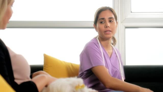 ung veterinär prata hund ägare under hembesök - veterinär, undersökning bildbanksvideor och videomaterial från bakom kulisserna