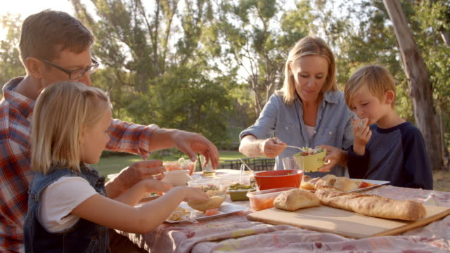 young white family enjoying a picnic at a table in a park - picnic stock videos and b-roll footage