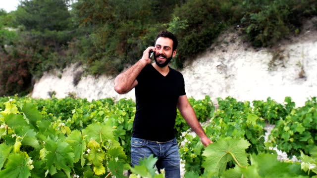 A young winemaker go through his winery, inspect the leaves and talk on the phone with partners video