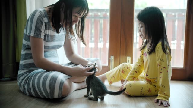 Young woman and daugther playing with cat at home