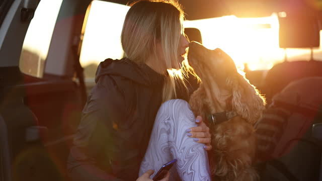 Young woman and dog enjoying sunset in open car trunk video