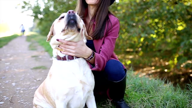 Young woman and her dog video