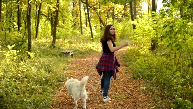 Mujer joven y su perro  - vídeo