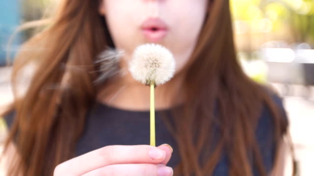 Young woman blowing dandelion Young woman blowing dandelion in slow motion dandelion stock videos & royalty-free footage