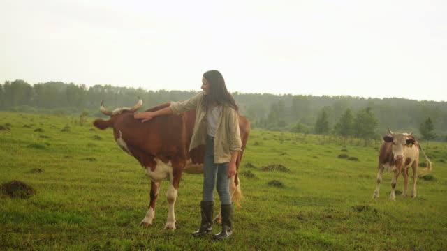 vídeos de stock e filmes b-roll de young woman caress a cow. farmer at countryside in summer. - agricultora