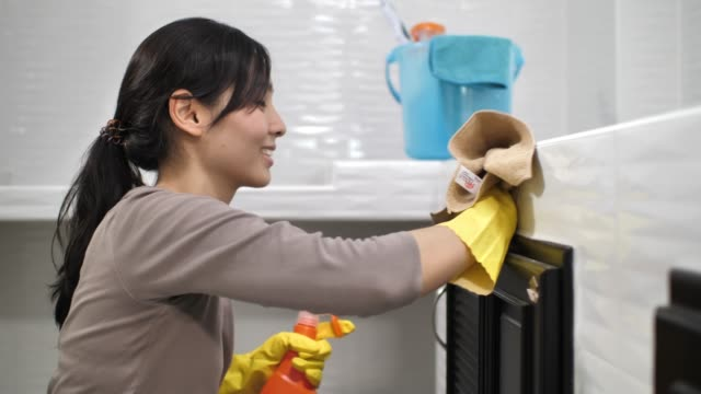 Young Woman Cleaning The Kitchen with Spray
