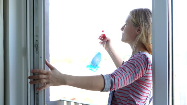 Young woman cleaning the window
