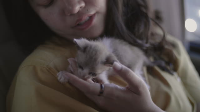 Young woman cuddles small adopted kitten.